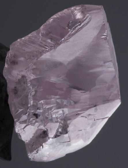 Petra Diamonds diamant rose 16.39 cts mine Williamson Tanzanie BusBy Jewelry