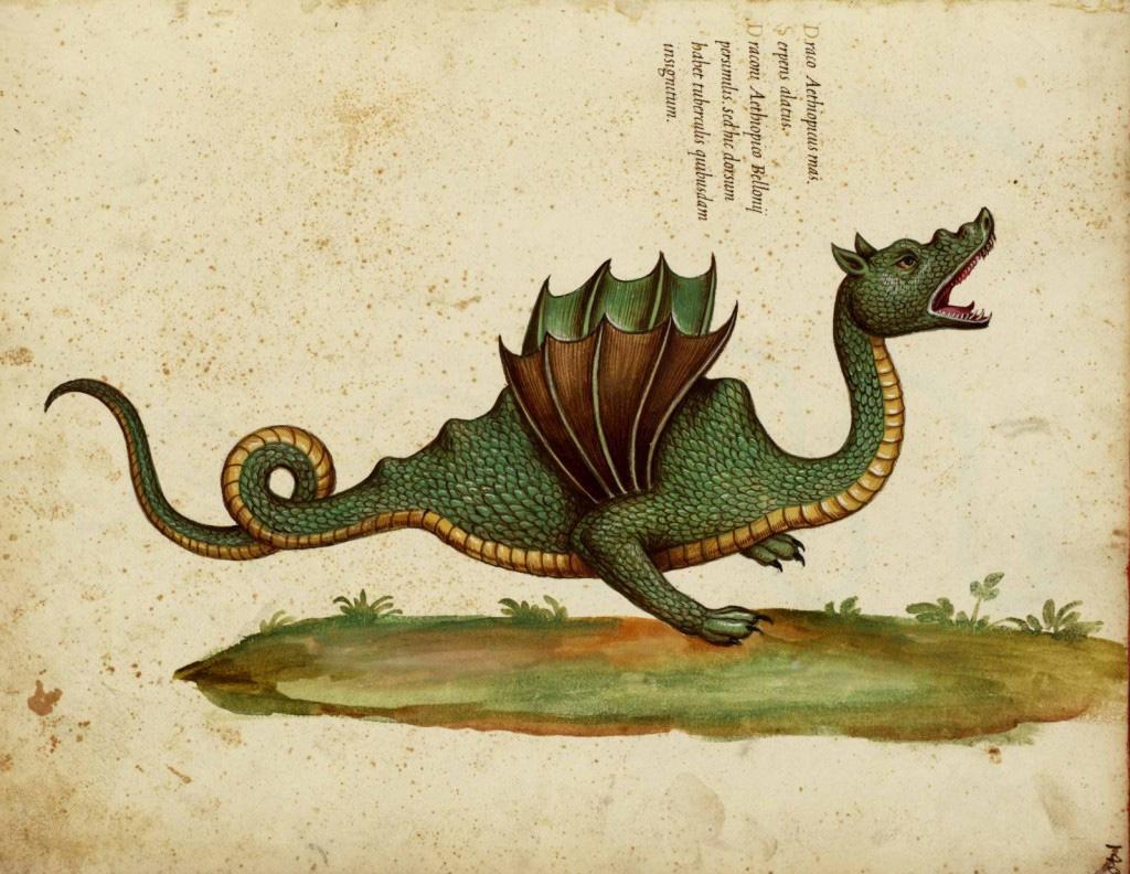 Symbole et gravure d'un dragon pour la Twist, la bague réversible et personnalisable de BusBy Jewelry